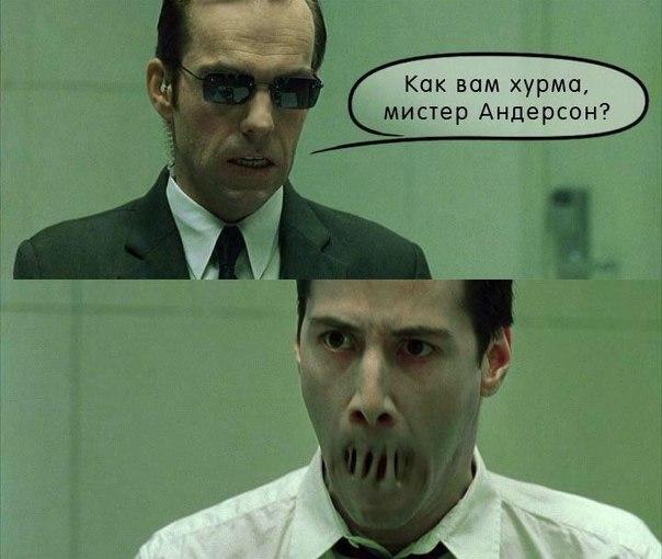 "Прикол про хурму и ""Матрицу"""