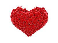 Страстное сердце
