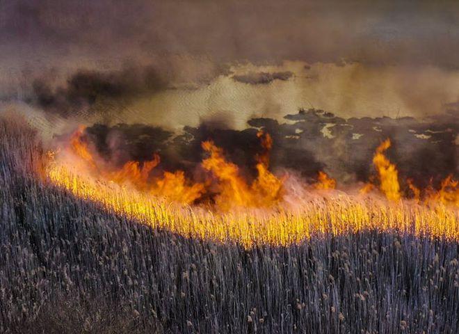 Чорнобиль у вогні