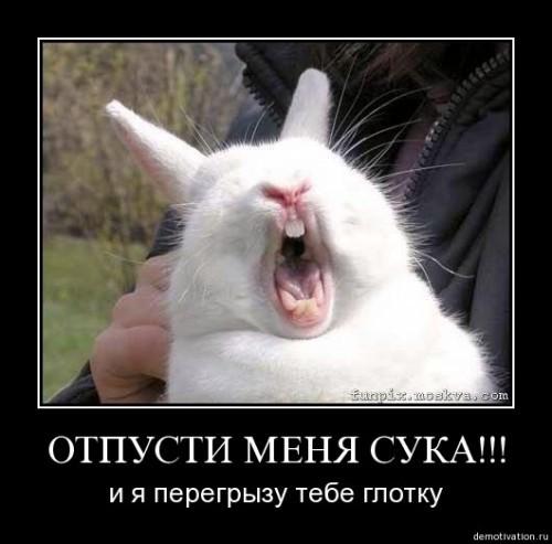 Руки прочь!:)