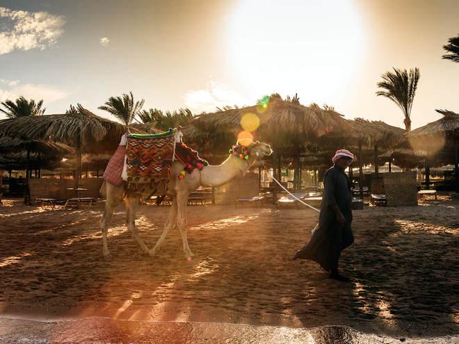 Египет, отель Jaz Makadina