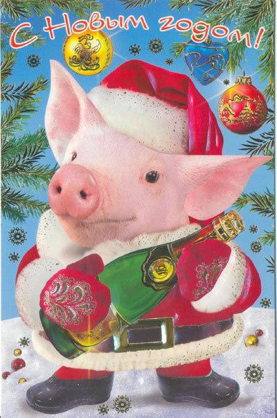 Открытки на Новый год 2019 свиньи
