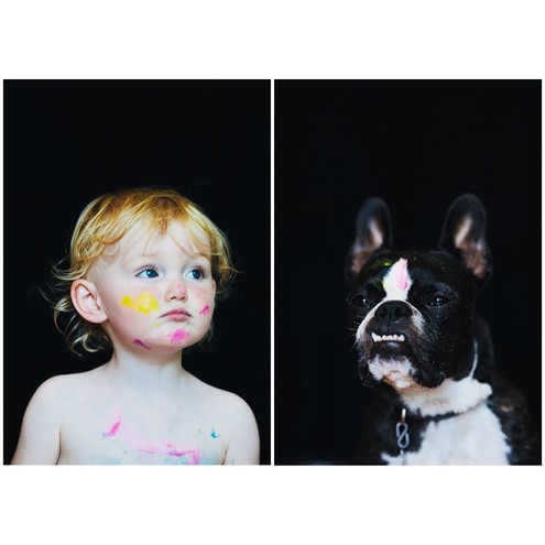 One baby, One dog