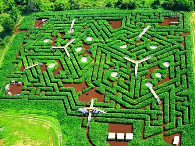 Самые запутанные лабиринты: Davis' Mega Maze, Стерлинг, США
