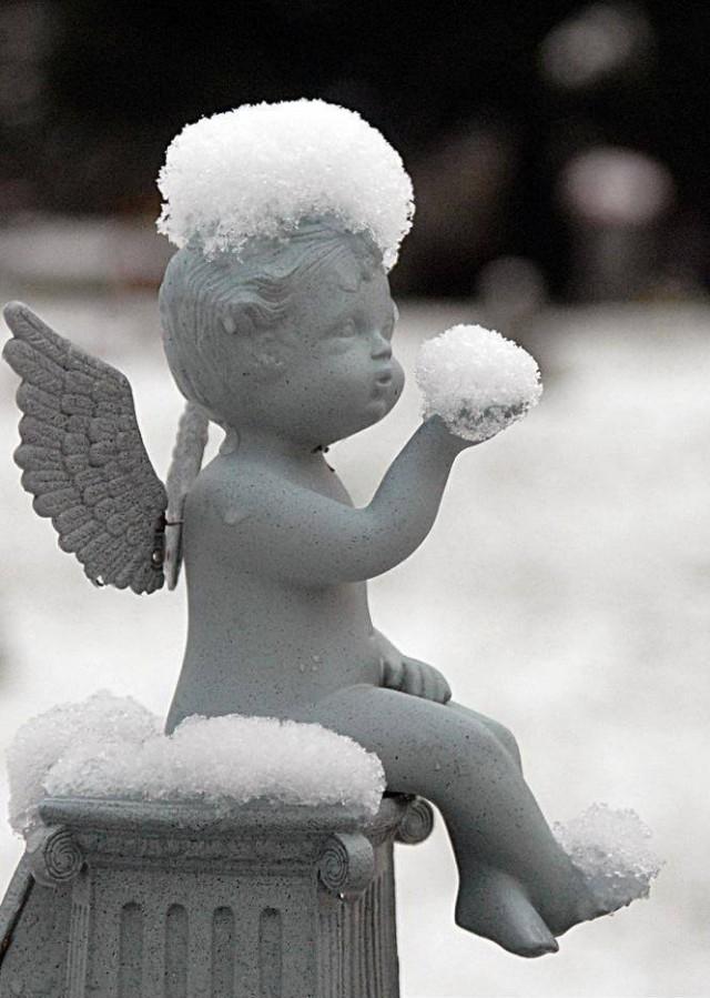 Удачный кадр. Ангелочек и снег