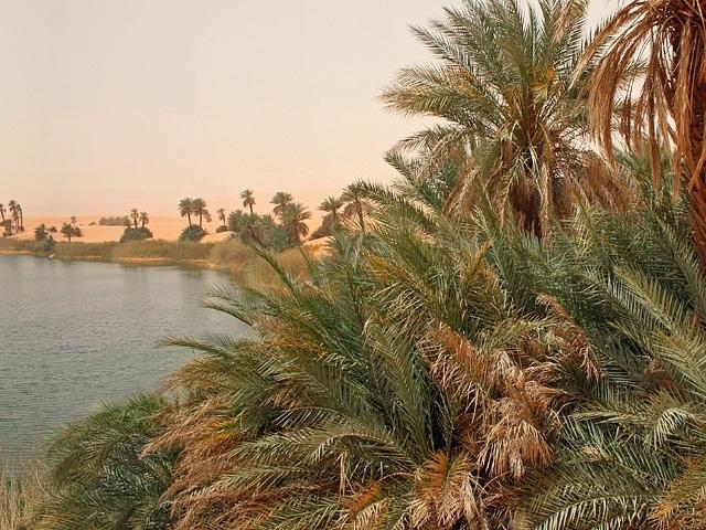 Ubari Oasis, Libya