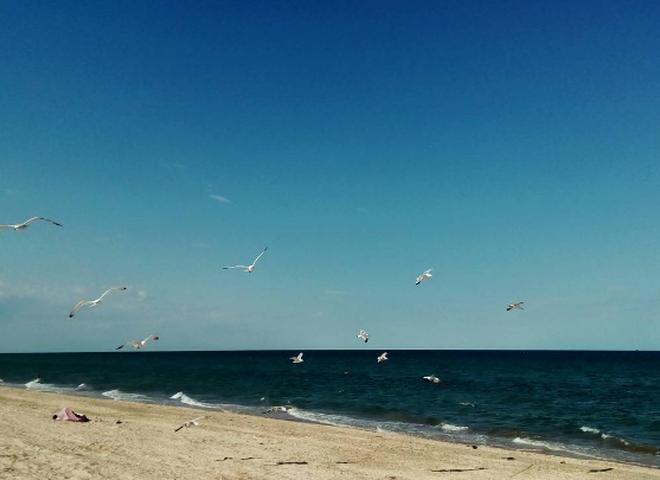 Відпочинок на морі недорого: Арабатська стрілка − унікальне місце в Україні