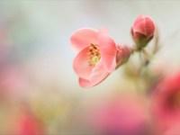 Весна на улице