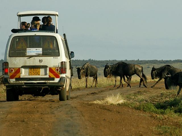 Сафарі-туризм: Африканське сафарі