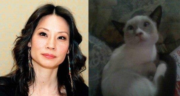 Люси Лью и её котэ