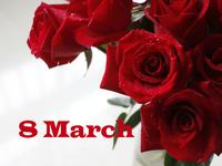 Розы к 8 Марта