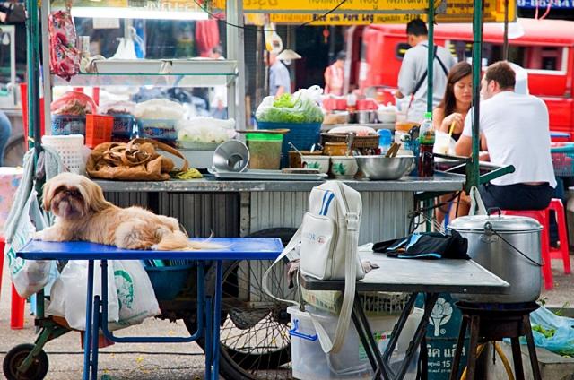 Чианг-Май фото