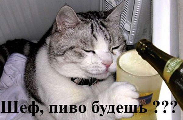 "Операция ""Пятница"""