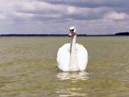 Где отдохнуть летом в Украине: Шацкие озера