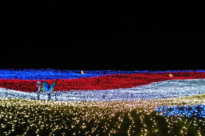 Фестивалі лютого: квіти з льоду в Японії