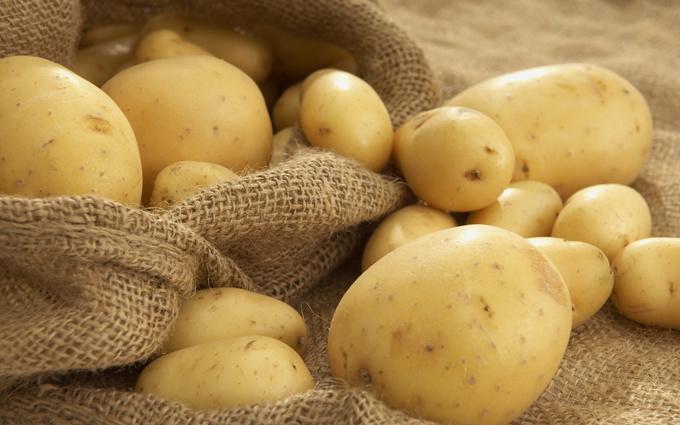 Продукты, которые можно есть во время диетыПродукты, которые можно есть во время диеты