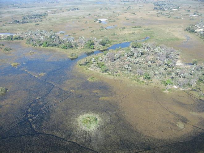 Дельта Окаванго, Ботсвана