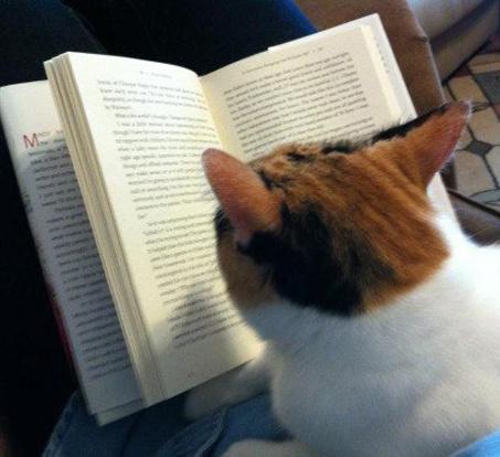 Ну почитай сказку! Я так не усну