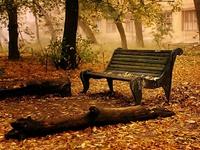 Скамейка в осеннем парке