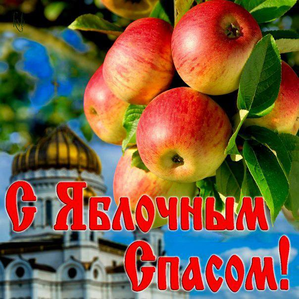 фото красивые яблочный спас