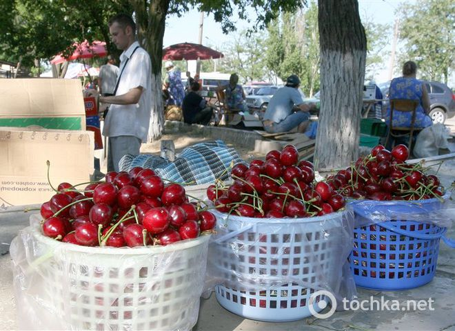 В столовые Януковича купили черешню по 200 гривен и малину по 670 гривен