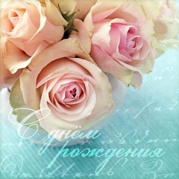 день рождения фото открытка