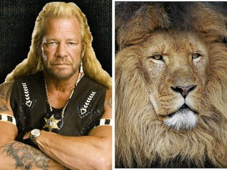 Знаменитости похожие на зверей