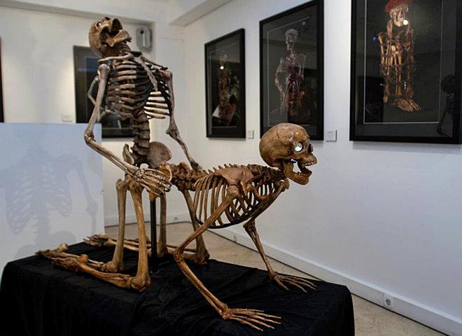 Музей еротики в Парижі
