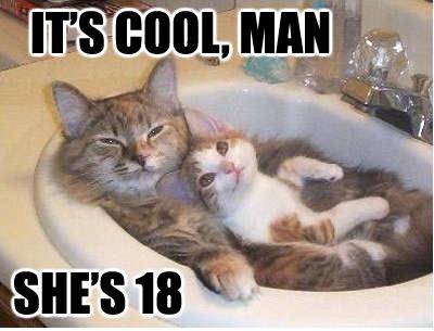 Мартовский кот добился своего