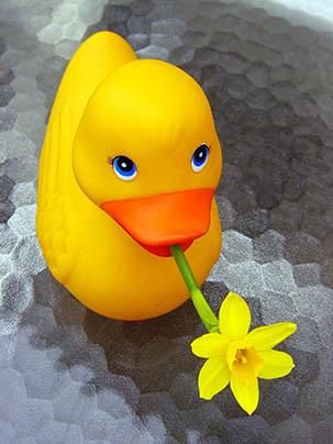 Дарю Вам цветочек!