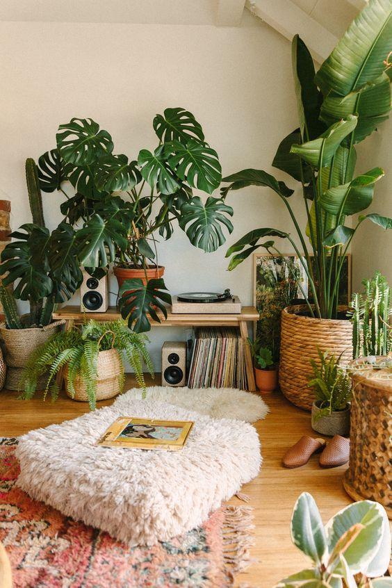 Растения в бохо интерьере