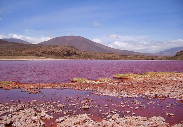Красная лагуна в Чили