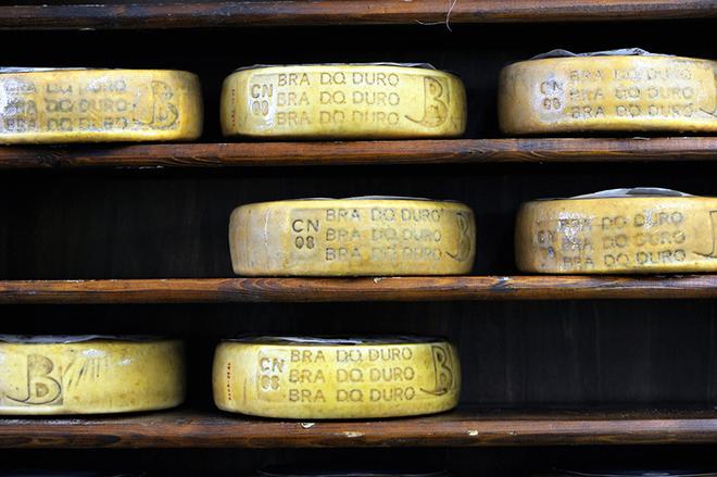 Ярмарка вкуса на фестивале сыра в Бра