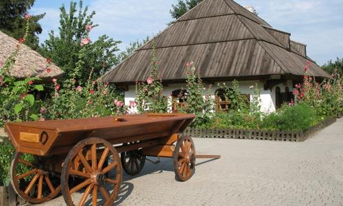 Карпати село