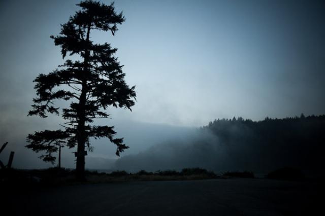 Слідами зйомок «Сутінок»
