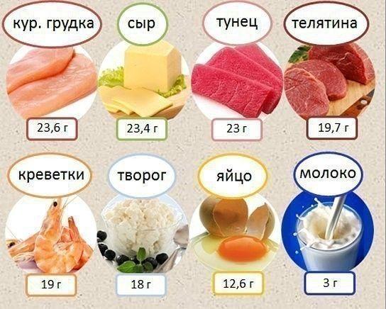 Продукти з високим вмістом білка