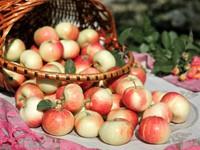 Корзинка наливных яблочек