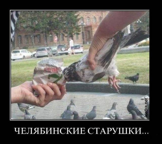 Челябинский демотиватор