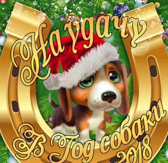 На удачу в Новом году собаки