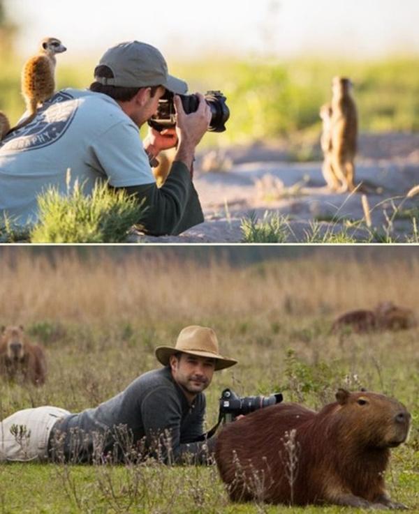 Милые помощники фотографов