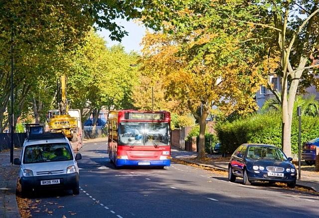 Самые интересные маршруты для автобусных туров осенью