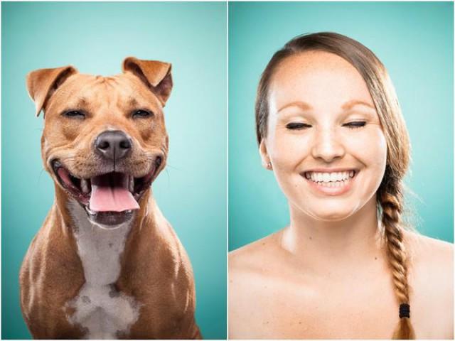 Интересное сходство собак и хозяев