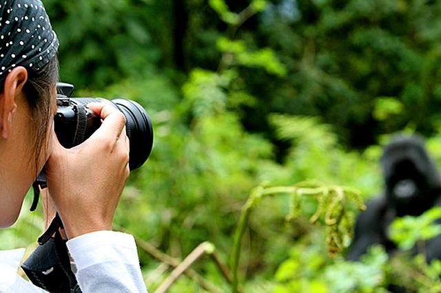 Самые лучшие места для медового месяца: парк Уганды