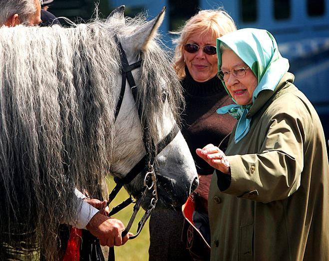 Где можно встретиться взглядом с монархом: Елизавета II