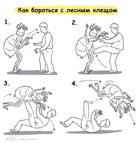 Краткий справочник по борьбе с клещами;)