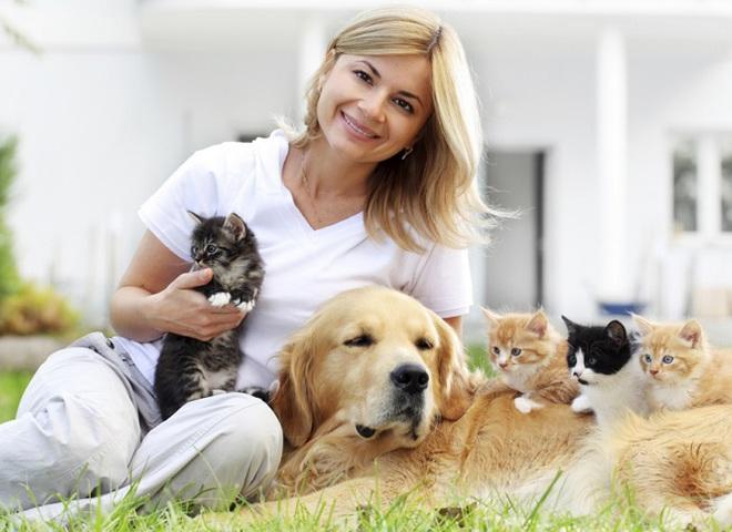 Гаджети для домашніх тварин
