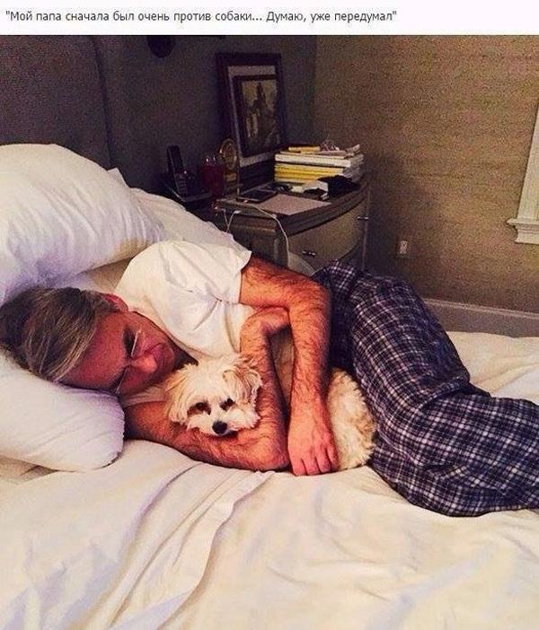 - Папа, я хочу собачку! - Никогда!