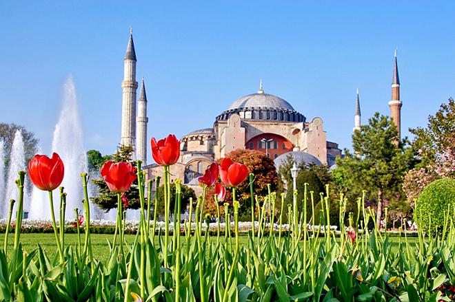 Международный фестиваль тюльпанов в Стамбуле