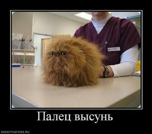 Неудобно получилось:)))