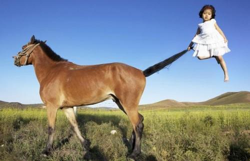 Покатай меня, большая лошада!